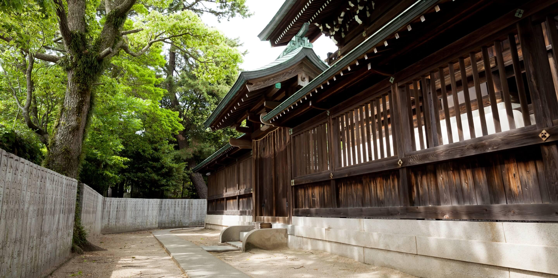 写真:吹揚神社裏の木漏れ日